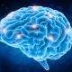 StartPoint-Counselling-brain